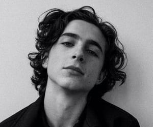 timothee chalamet, call me by your name, and timothee image