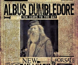 harry potter, albus dumbledore, and daily prophet image