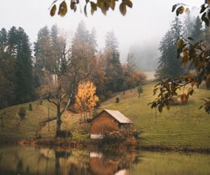 autumn, home, and nature image