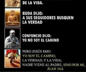 buda, vida, and confusio image