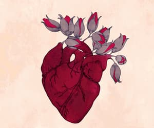 gif, heart, and rose image