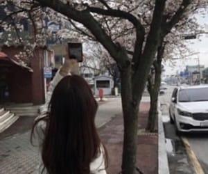 ulzzang, spring, and korea image