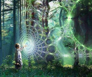 boy and forest image