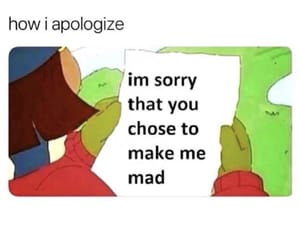 funny, meme, and apologize image