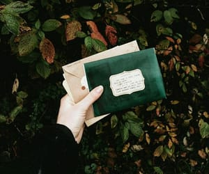 green, aesthetic, and Letter image