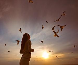 bird, girl, and seaside image