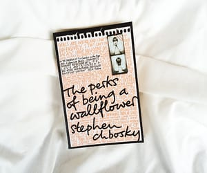 bibliophile, read, and stephen chbosky image