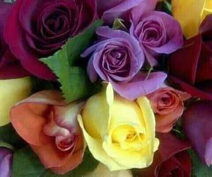 belleza, ramo, and flores image