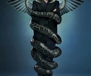 dr house, poster, and tv show image
