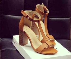 brown, talons, and camel image
