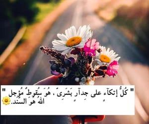arabic, pic, and الله image