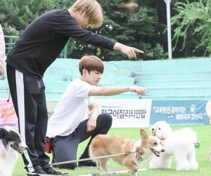 tae, bts, and vkook image