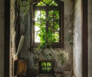 abandoned, black, and green image