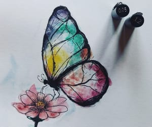 aesthetics, art, and butterfly image