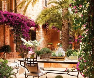 flowers, garden, and france image