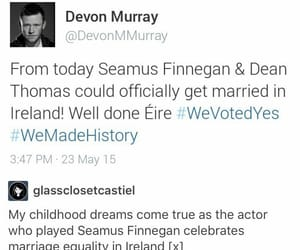 harry potter, hp, and seamus finnigan image