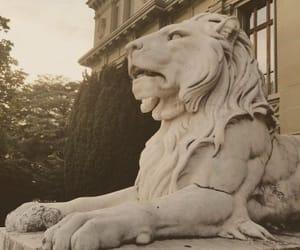 aesthetics, animals, and architecture image