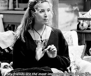 friends, quotes, and gif image