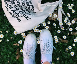 carefree, bag, and flower image