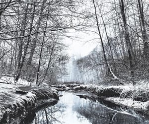 photograpghy, snow, and winter image