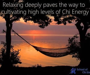 evening, hammock, and relax image