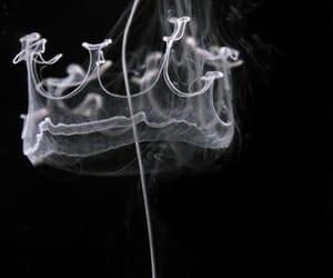 smoke, crown, and king image