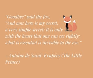 fox, quote, and saying image
