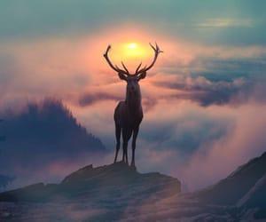 beautiful life image