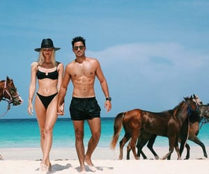 beach, horses, and models image