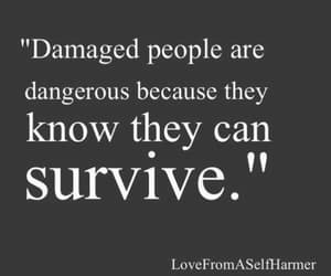 quotes, survive, and damaged image