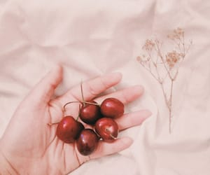 aesthetic, art, and cherry image