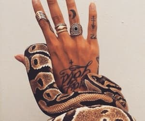 accessories, bite, and nails image