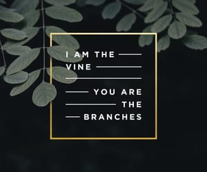 bible, verse, and vine image