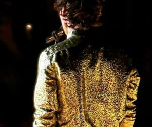 golden, Harry Styles, and harry styles back image