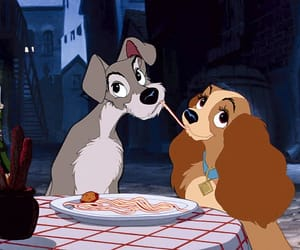 aesthetic, lady and the tramp, and animated image
