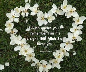 allah, muslim, and hijaber image