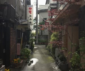 japan, street, and theme image