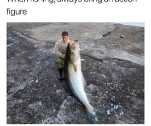 awesome, fish, and funny image