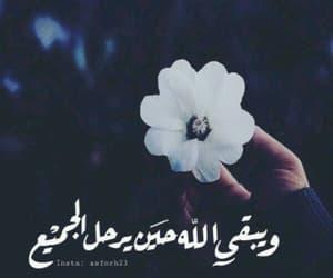 Image by مرتضـى ℳℜ