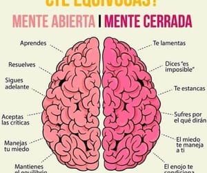 frases, life, and positivismo image