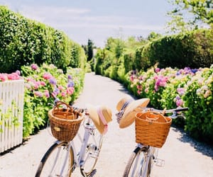 bicycle and preppy image