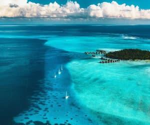 blue, sea, and Island image