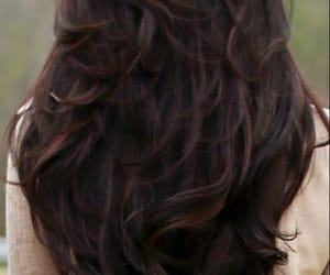 hairstyle, hair color, and hair image