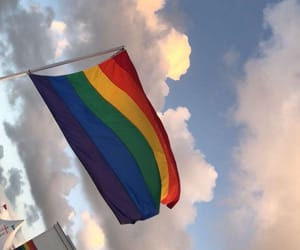 pride, lgbt, and flag image