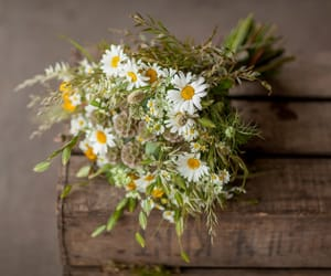 bouquet, flowers, and daisies image