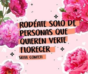 frases, flowers, and pink image