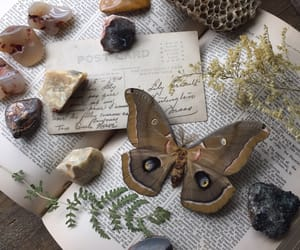 crystals, magical, and vintage books image