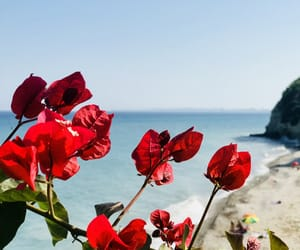 europe, sea, and summer image