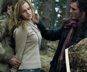 hermione, harry potter, and hermione granger image