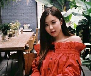 korean fashion, rose, and blackpink image
